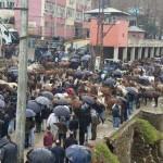 Nous sommes les mules de Roboski !